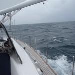 Dolfijnen op weg naar La Coruna (1)