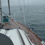 Jan geniet vanuit het voorraam van de dolfijnen naast de boot